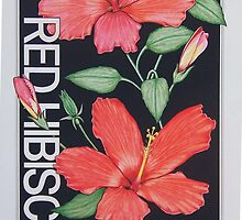 Red Hibiscus by J.D. Bowman