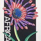 African Daisy by J.D. Bowman