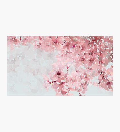 Meshed Up Japanese Sakura Blossoms Photographic Print