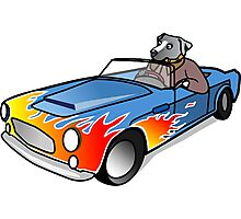 Dog Driving Race-Car, Illustration Photographic Print