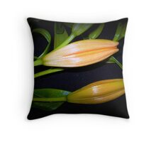 An Orange Pair - Lily Buds Throw Pillow
