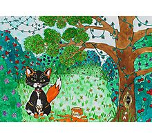 Foxy Kitten Photographic Print