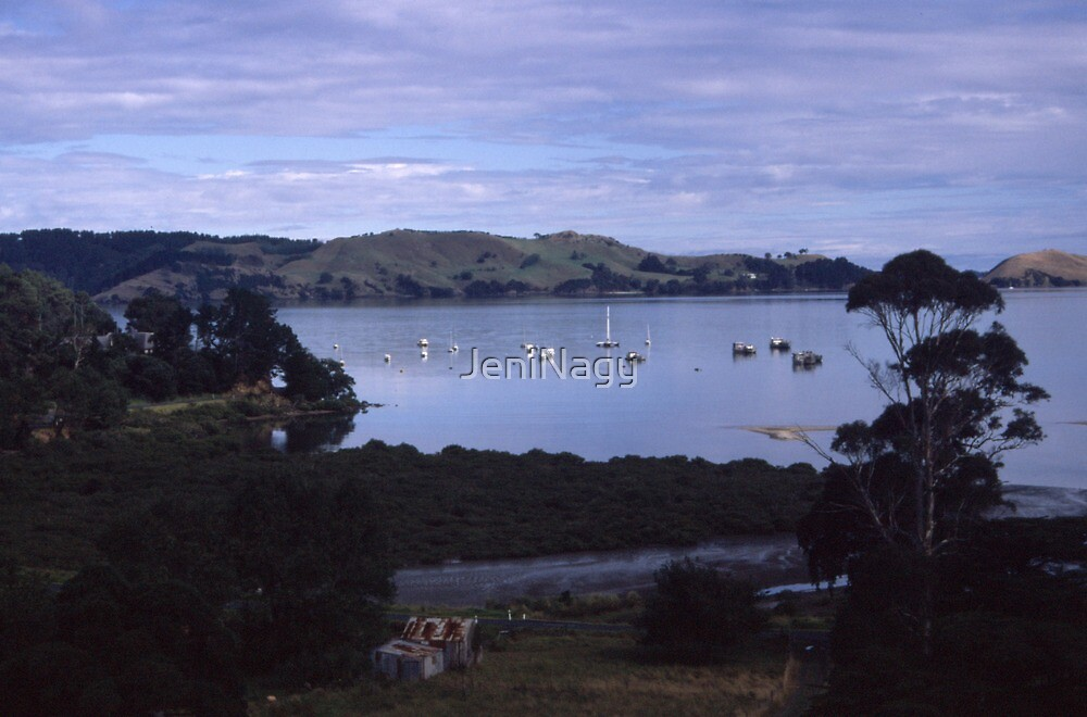 Coromandle Peninsula, NZ by JeniNagy
