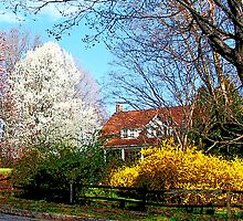 House on the Hill in Spring by Susan Savad