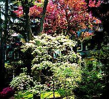 Spring Trees by Susan Savad
