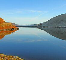 Meggett Dam by Ken McKillop