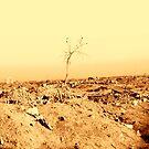 Apocalypse by Charles Buchanan