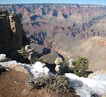 Grand Canyon - Snowy edge by ellismorleyphto