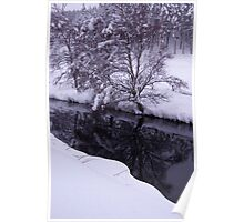 Reflections in Loch Moy burn, Scotland Poster