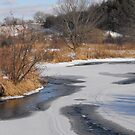 Winter In Warkworth by Tracy Wazny