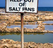 Precious Salt by Kerry Dunstone