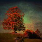 Majestic Linden Berry Tree by Susanne Van Hulst
