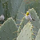 FRIENDS in THE CACTUS by Judy Grant