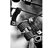 Abstract Web Photographic Print