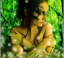 In The Enchanted Forest by Mariusz Zawadzki