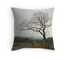 Washburn Valley from West End Throw Pillow