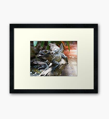 Water Dragon in Reptile House at Melbourne Zoo Framed Print