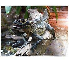 Water Dragon in Reptile House at Melbourne Zoo Poster