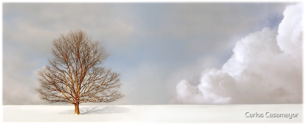 Alone in the Whitness by Carlos Casamayor