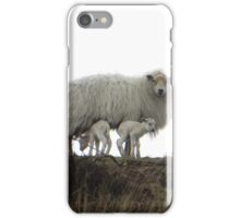 Born under a tree, two little lambs iPhone Case/Skin