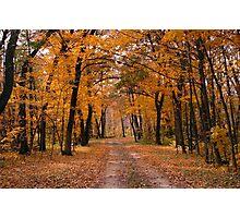 Rush River Autumn Photographic Print