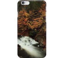 Laurel Creek Cascades iPhone Case/Skin