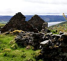 Scottish Highlands, Abriachan, ruins above Loch Ness by BronReid
