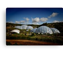 Eden Project Canvas Print