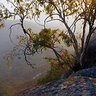 Mt Buffalo Sunrise by Harry Oldmeadow