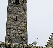 St Rule's Tower, St Andrews Cathedral, Scotland by BronReid