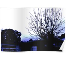 Spines in the Sky Poster