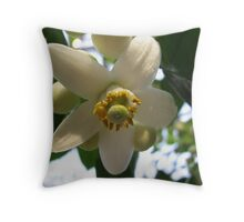 Grapefruit Blossom Throw Pillow