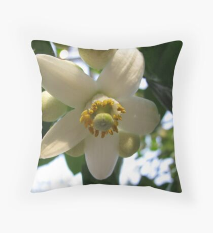 Grapefruit Blossom Throw Pillow
