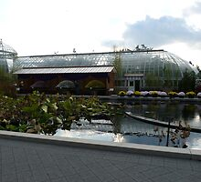 Enid Haupt Conservatory at Kiku time by MischaC