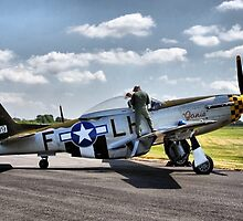 """P-51 MUSTANG """"JANIE"""" by Nick Barker"""