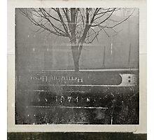 demian Photographic Print