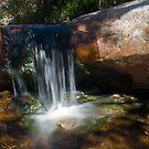 Wonderland Waterfall by Pascal and Isabella Inard