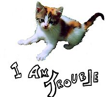 """""""I AM TROUBLE"""" Kitten by IAmTrouble"""