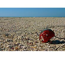 Red Float Photographic Print