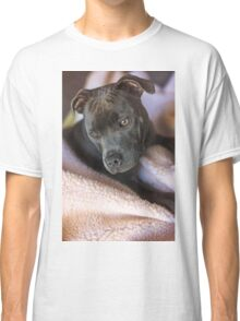 Pure Blue Staffy Classic T-Shirt