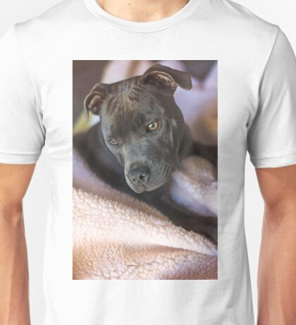 Pure Blue Staffy Unisex T-Shirt