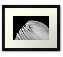 Red Onion in Black and White Framed Print