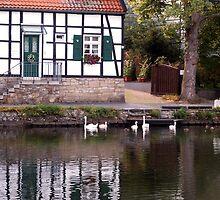 Cottage on the Riverside by Detlef Becher