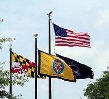 Celebrating Flag Day USA by WalnutHill