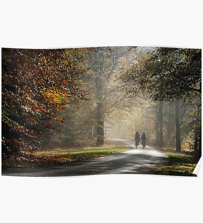 Biking in an autumnal paradise Poster