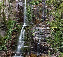 Minnamurra Falls by Ray Fowler