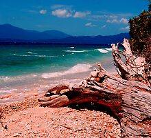 franklin island. by alyssa naccarella