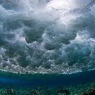 Breaking Waves by Carlos Villoch