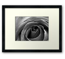 Beauty without colour Framed Print