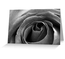 Beauty without colour Greeting Card